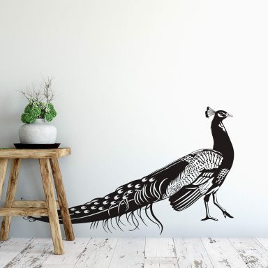 Peacock 1 Wall sticker