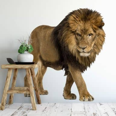 Wandtattoo Real Lion