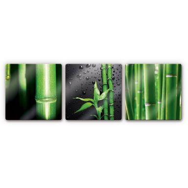 Glasbild Bambus-Set - quadratisch (3-teilig)