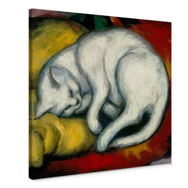 Leinwandbild Marc - Die weiße Katze - quadratisch