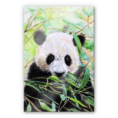 Acrylglasbild Toetzke - Pandabär