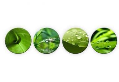 Glasbild Natur Set (4-teilig) - rund