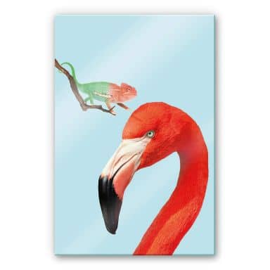 Acrylglasbild Loose - Colorful Friends