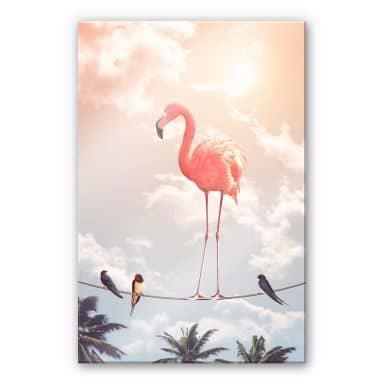 Acrylglasbild Loose - Flamingo and Friends