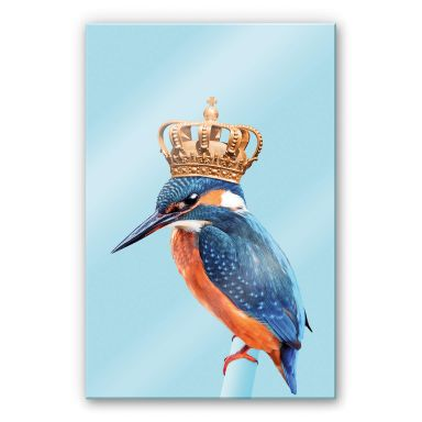 Tableau en verre acrylique Loose - Le roi martin-pêcheur