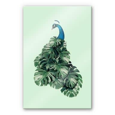 Acrylglasbild Loose - Monstera Bird
