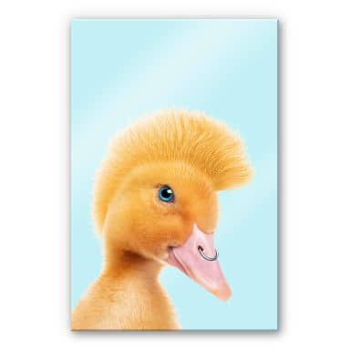 Acrylglasbild Loose - Rebel Duckling