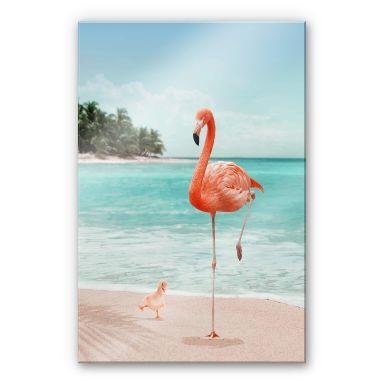 Acrylglasbild Loose – Wannabe Flamingo
