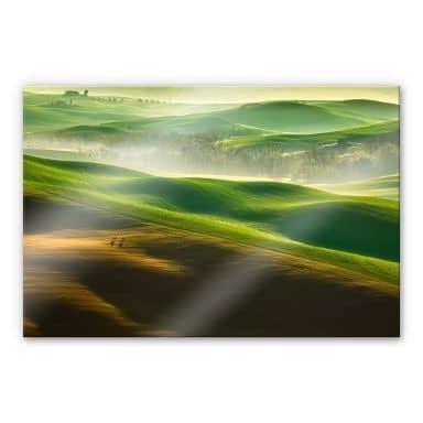 Acrylglasbild Browko - Grüne Wiesen