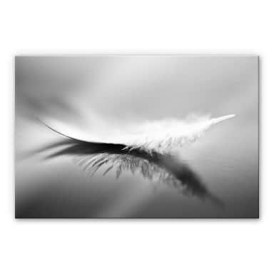 Acrylglasbild Coutinho - Schwerelos