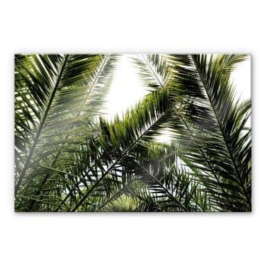 Acrylic - Palm Trees