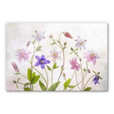 Acrylglasbild Disher - Das Bouquet