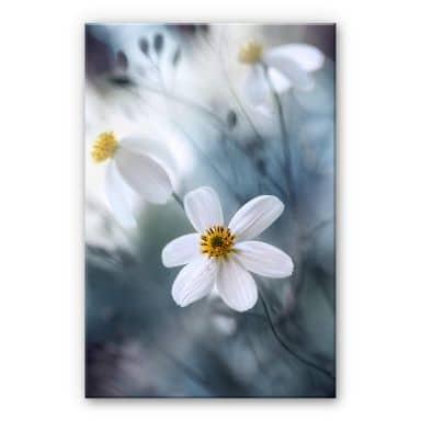 Tableau en verre acrylique Disher - Fleurs blanches
