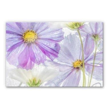 Acrylglasbild Disher - Frozen Flowers