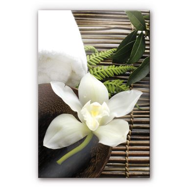 Acrylic glass Wellness Orchid