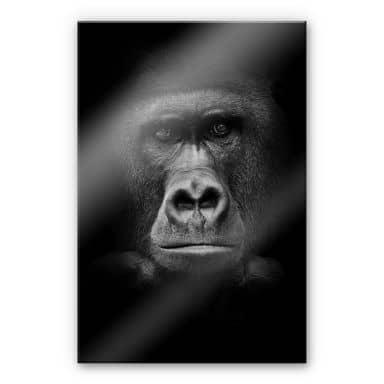 Gorilla XXL Wall picture
