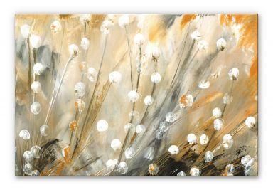 Acrylglasbild Niksic - Pusteblumen
