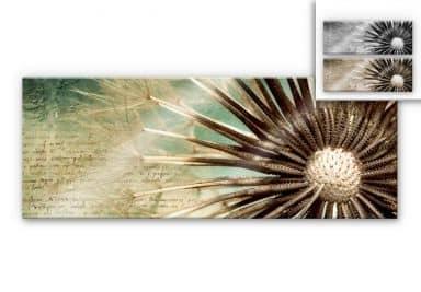 Acrylglasbild Pusteblumen-Poesie - Panorama