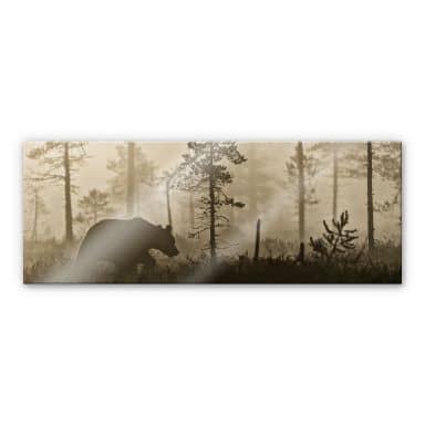 Acrylglasbild Ove Linde - Nebel am Morgen - Panora