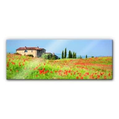 Acrylic glass Tuscany - Panorama