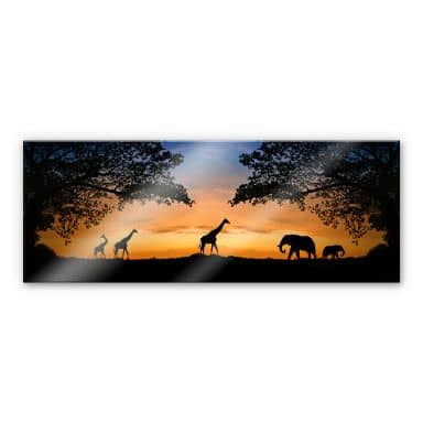 XXL Wall Picture African Sunset