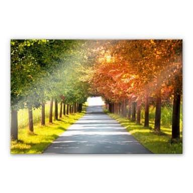 Acrylglasbild Herbst