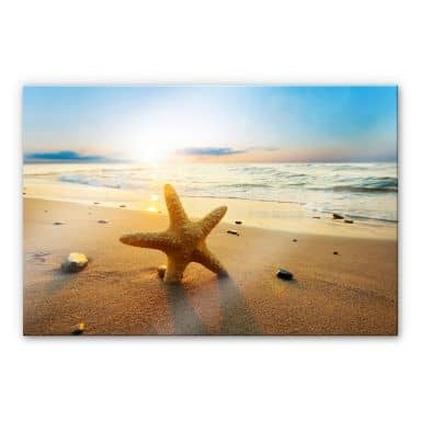Starfish in the Sand XXL Wall picture