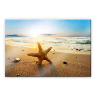 XXL Wandbild Seestern im Sand