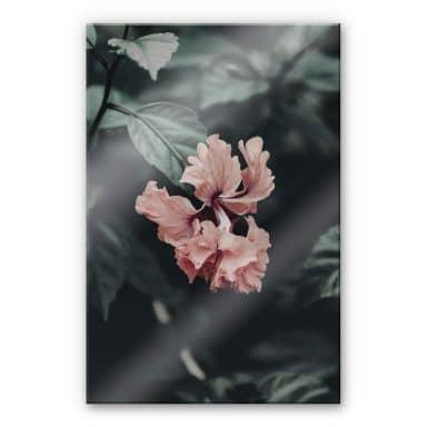 Acrylglasbild Tropische Blüte