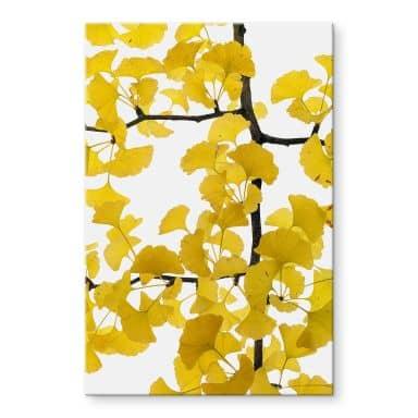Acrylic Print Tan Kadam - Flower Gingko