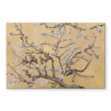 Acrylglasbild van Gogh - Mandelblüte Creme
