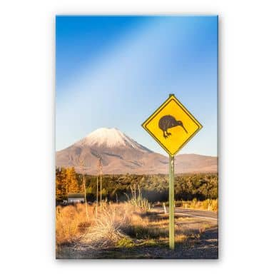 Acrylglasbild Colombo - Straßenschild: Achtung Kiwi