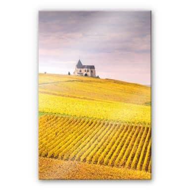 Acrylglasbild Colombo - Weinfelder in der Champagne