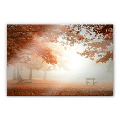 Stampa su acrilico Dingemans - Foresta