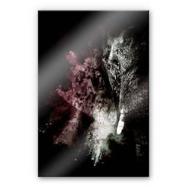 Acrylglasbild Hugonnard - Wild Explosion: Elefant 02