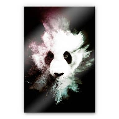 Acrylglasbild Hugonnard - Wild Explosion: Panda
