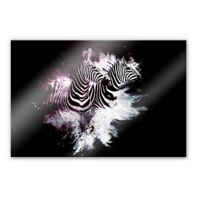 Acrylglasbild Hugonnard - Wild Explosion: Zwei Zebras