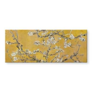 Tableau en verre acrylique van Gogh - Amandier en fleurs ocre - Panorama