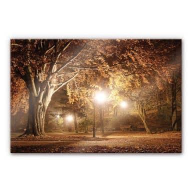 XXL Wandbild Herbst im Park