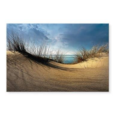 Acrylglasbild Schuurmans - Stranddünen