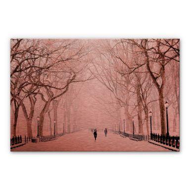Aluminium Dibond Kopereffect - Winter Central Park