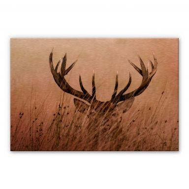 Alu-dibond copper - Deer