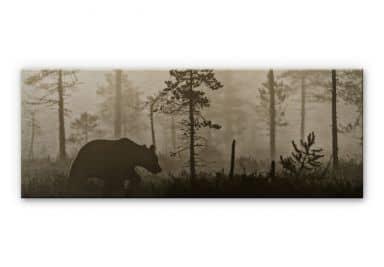 Alu-Dibond Bild Ove Linde - Nebel am Morgen - Pano