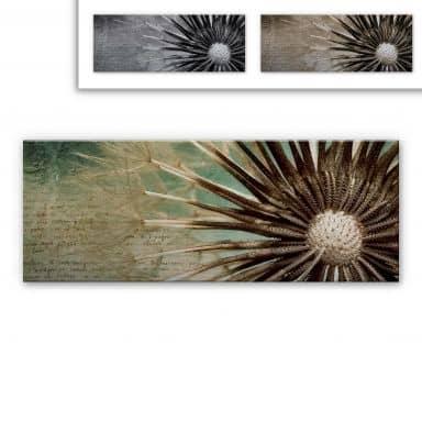 Dandelion Aluminium Print - Poetry - Panorama