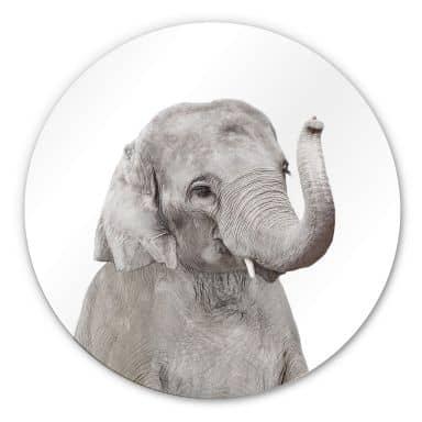 Wandcirkel Sisi & Seb - Baby Elephant