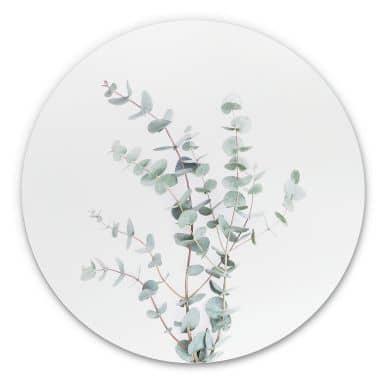 Wandcirkel Sisi & Seb - Eucalyptustak
