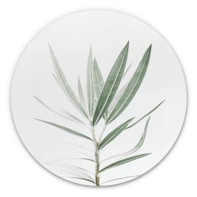 Wandcirkel Sisi & Seb - Oleander