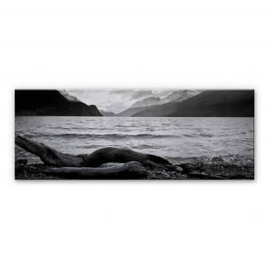 Log and Lake - Panorama Aluminium print