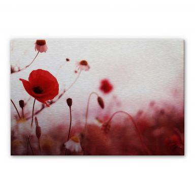 Poppy Impressions Aluminium print