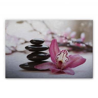 Alu-Dibond Bild Orchidee